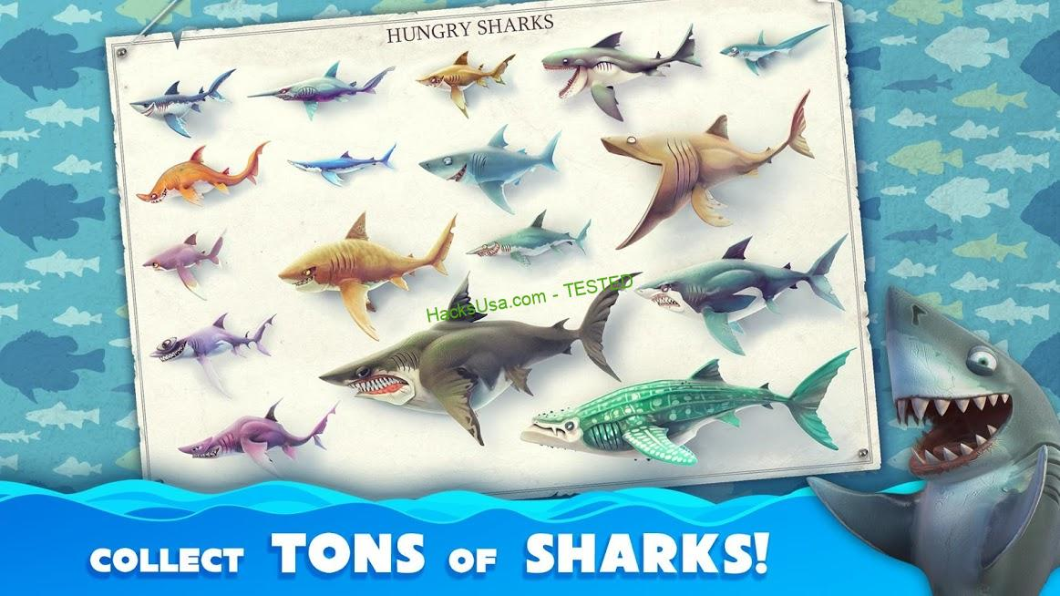 Hungry Shark Heroes : VIP Mod Kill enemies with the first hit APK