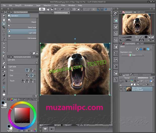 Clip Studio Paint 1.8.8 Crack + Latest version Free Download 2019